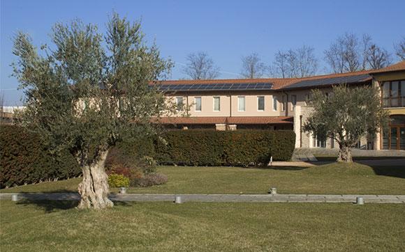 Tenuta Albertini Zevio Verona Particolare giardino