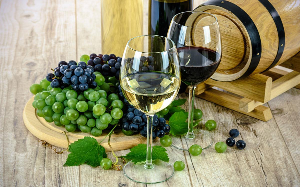 Tenuta Albertini Zevio Verona Consiglia Divertimento Arte e Cultura nel Territorio della Provincia di Verona La Strada del Vino Soave